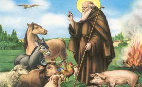 17 gennaio: Sant'Antonio, abate
