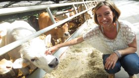 puntata-1-new-farmers-bovini