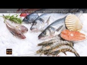 pesce-fresco-ecco-come-riconoscerlo-ed-evitare-brutte-sorprese
