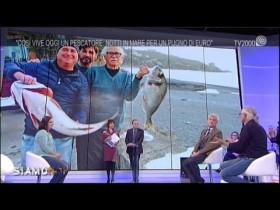 pesce-fresco-come-riconoscerlo-ed-evitare-brutte-sorprese