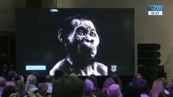 Homo-Naled-sudafricai
