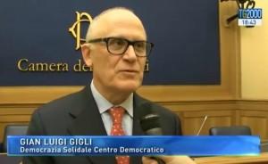 Democrazia Solidale-Centro Democratico Gian Luigi Gigli