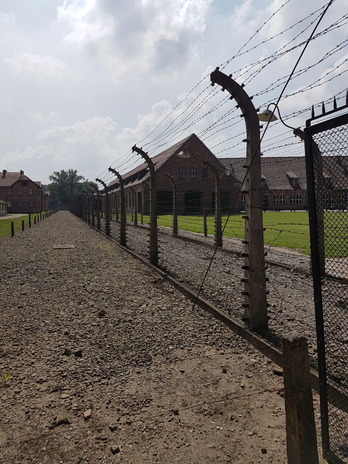 Ad Auschwitz-Birkenau dove venerdì si recherà in visita Papa Francesco