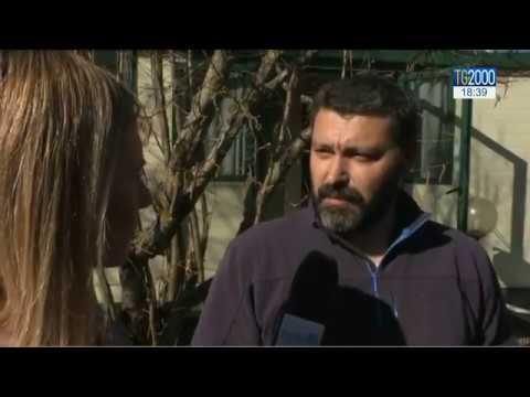 """Terremoto: onlus dona 14 """"casette"""" ad Amatrice,Accumoli e Norcia. Il reportage di Barbara Masulli"""