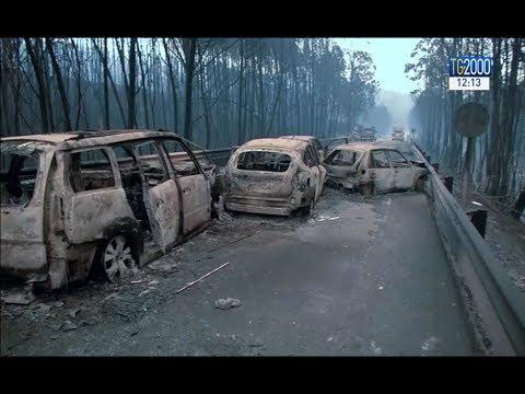 Portogallo, incendio nella foresta di Pedrogao: 62 morti e 250 dispersi