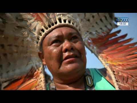 Sinodo Amazzonia, la relazione dei circoli minori