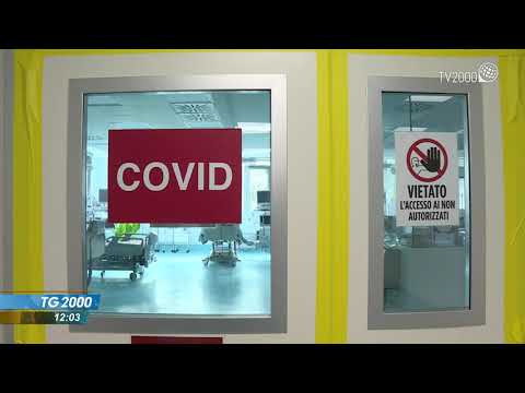 Covid, l'onda dei contagi sembra rallentare. Cala pressione ospedali