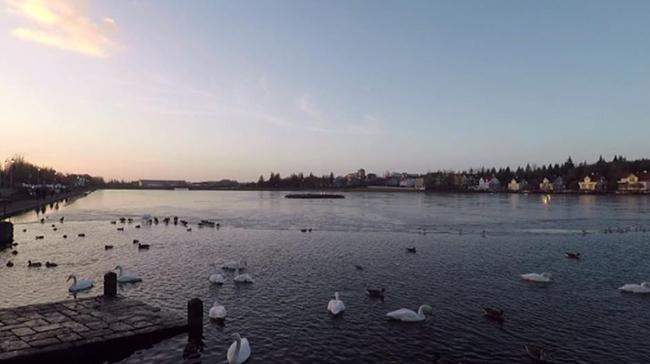 Reykjavík (i viaggi de Il Mondo Insieme)