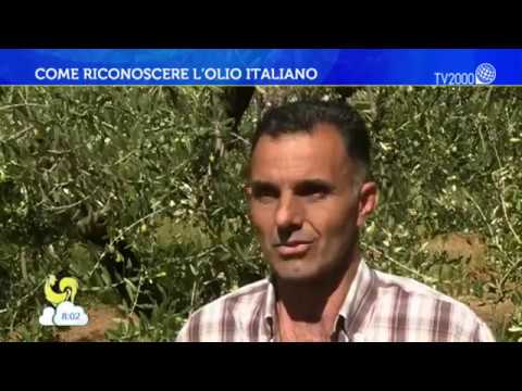 Come riconoscere l'olio made in Italy