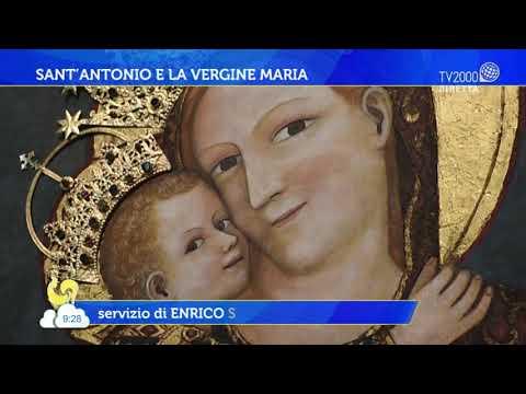 Sant'Antonio, uno dei santi più amati e venerati della cristianità