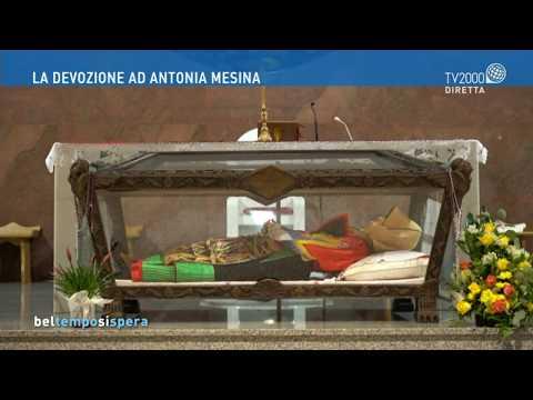 La devozione ad Antonia Mesina